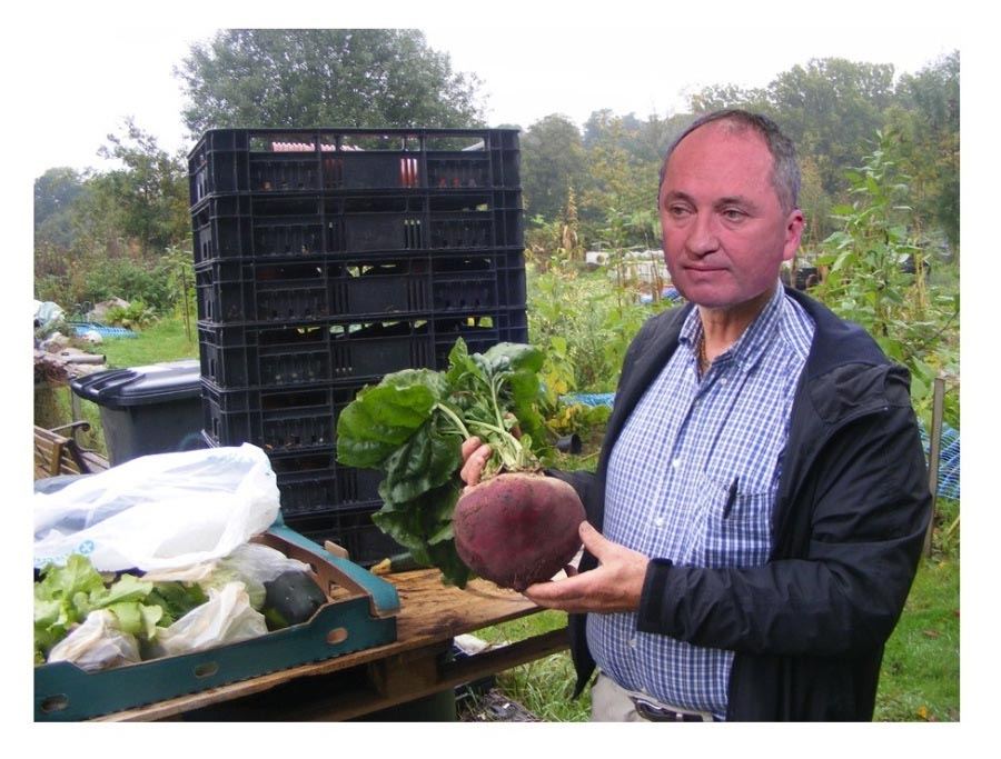 beetrooter with beetroot SMALL