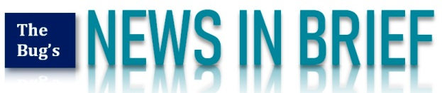 news in brief dinkus