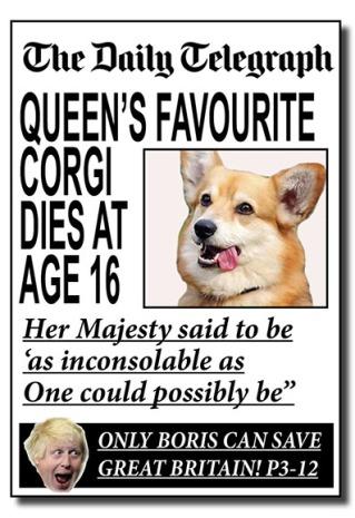 uk election mastheads- daily telegraph - net.jpg