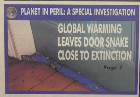 door snake panel.jpg