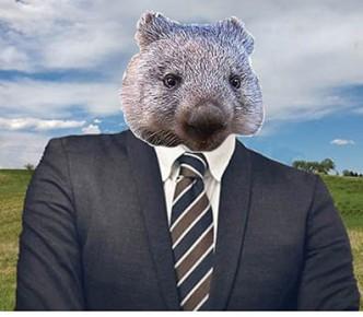 mccormack as wombat - net