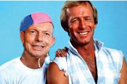abbott as strop - net