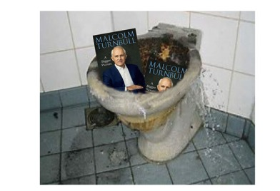 turnbull-book-in-crapper-net